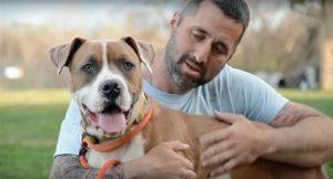 23367540 aspca raleigh pet sitters